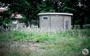 00radiokootwijk-0009